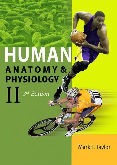 Human Anatomy & Physiology II (3rd Edition)