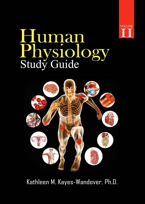 anatomy 2 exam study guide