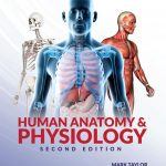Mark Taylor, Human Anatomy & Physiology
