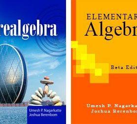 Prealgebra & Elementary Algebra (Both Books)