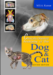 Clinically Oriented Anatomy of the Dog and Cat (Revised Edition)