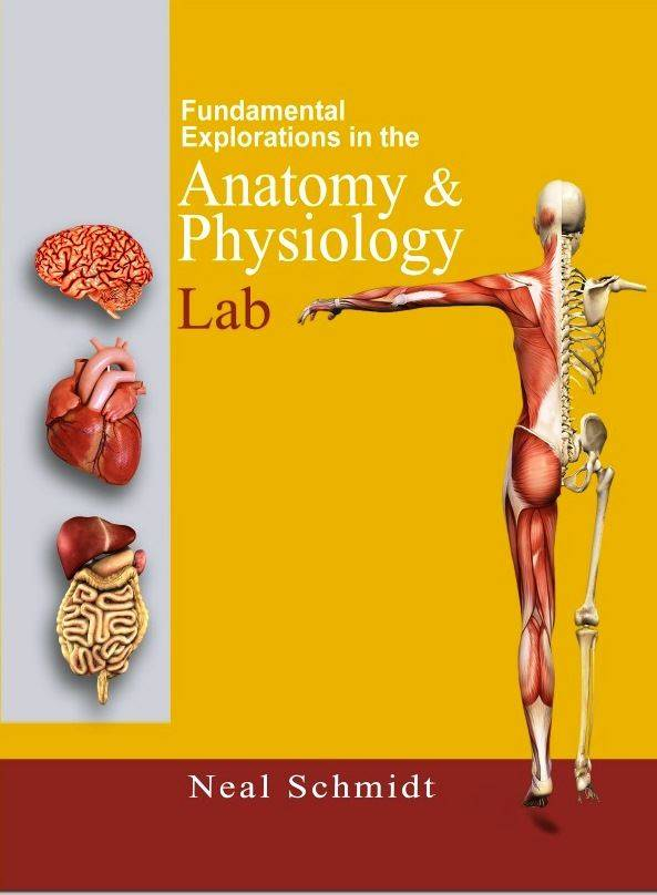 fantastic voyage unit 9 project anatomy and physiology 2 Anyone wishing to learn about the anatomy and physiology of the human body will find this course useful, particularly students in allied health programs such as nursing, physical therapy, pre-chiropractic, and pre-medicine high school students taking a&p should find this course helpful as well.