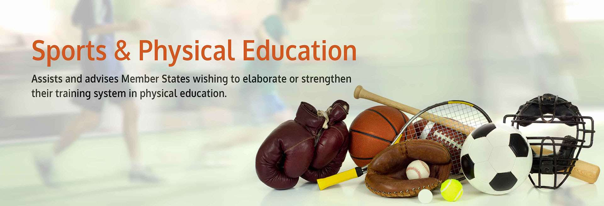Sports & Physical Education